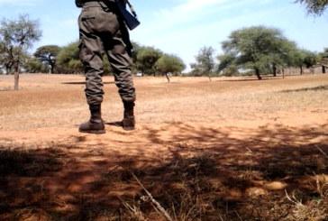 Senegal: un italiano dietro il progetto Senhuile