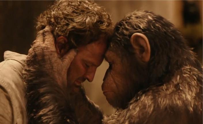 Apes revolution 2