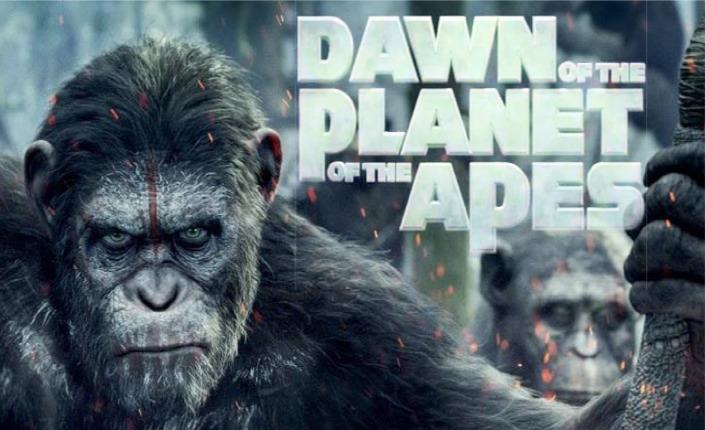 La rivoluzione inizia con una scimmia