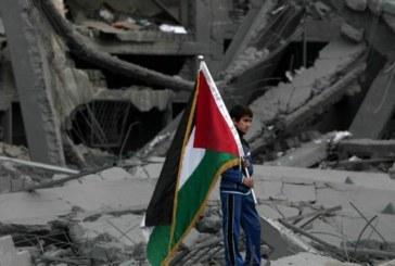 Le Ong italiane a Gaza: fermate il massacro
