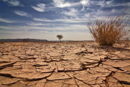 07 erosione terra