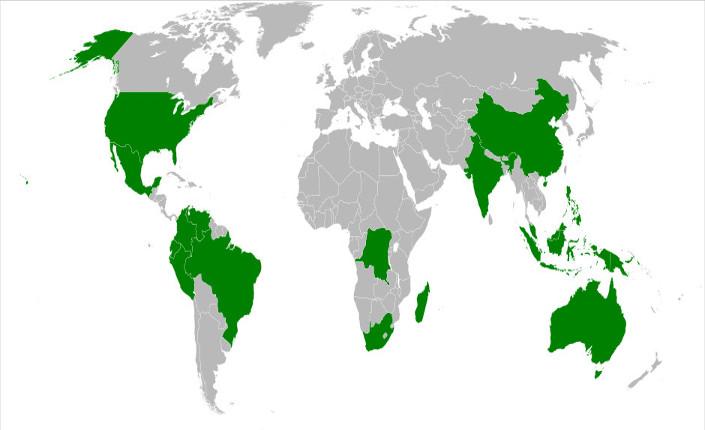 In verde il Gruppo dei B-17, i 17 paesi con maggiore megadiversità sul pianeta. Fonte pubblica, Internet