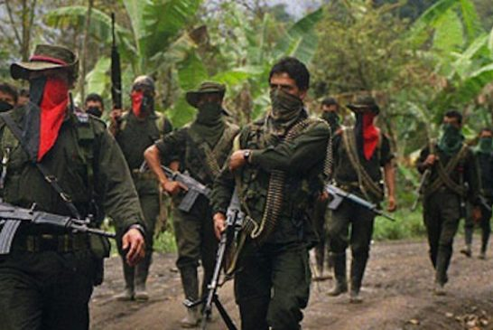 eln_guerrillas2