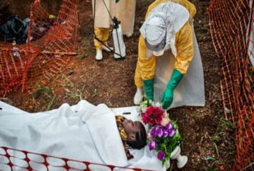 Ebola: cui prodest?