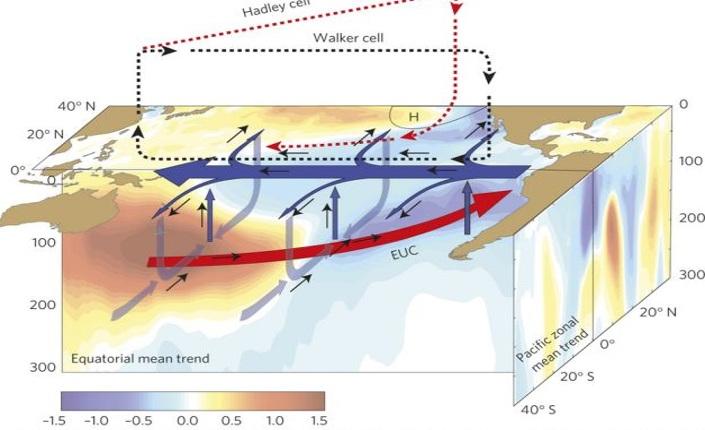 grafico pubblicato da Science