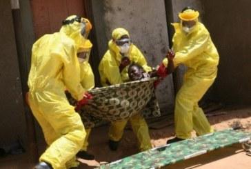 La matematica che favorisce Ebola