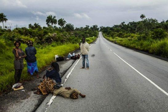 Deforestazione ebola 8