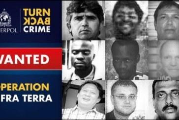 I nove criminali ambientali più ricercati dall'Interpol