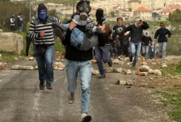 """L'esercito israeliano spara a un agronomo italiano: dov'è il """"nostro"""