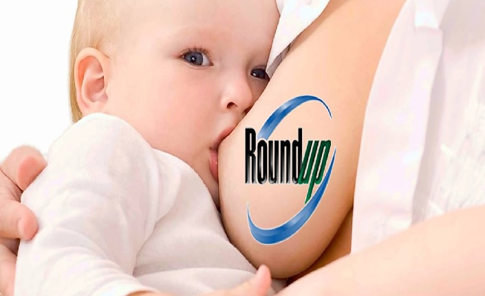 glifosato e latte materno