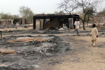 Nigeria: massacro jiadista. Oltre 2000 morti