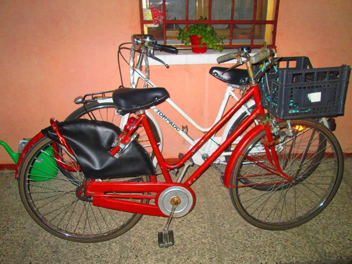 Hai desiderato la bicicletta? Leggi e pedala