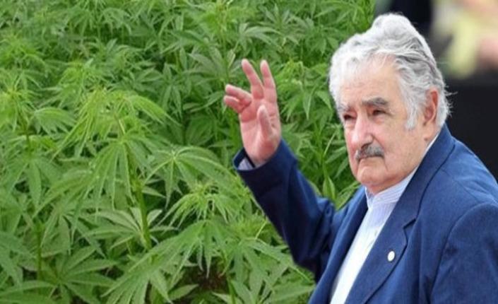 """Arriva la """"Mujica gold"""""""