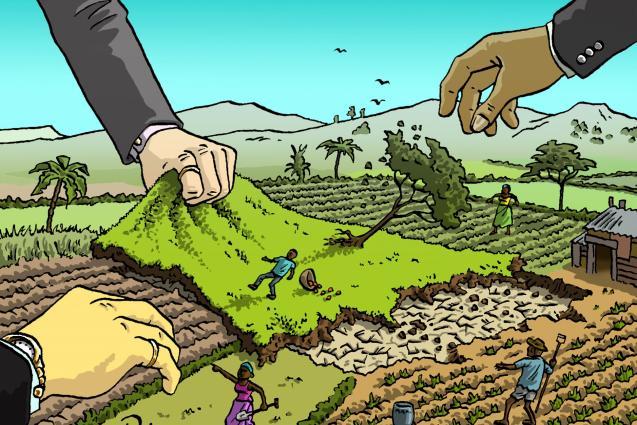 Chi denuncia il land grabbing muore