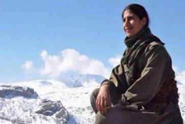 Kurdistan, la lotta delle donne nel nome di Ekin Wan