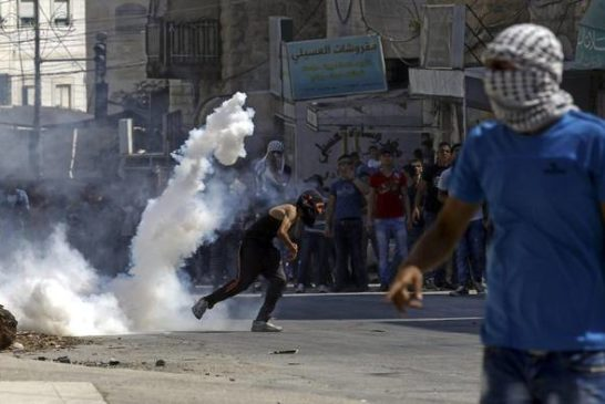 e  Palestina proteste 31 ago 2015