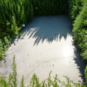 Aldo Ardetti Tomba di Italo Calvino nel cimitero di Castiglione della Pescaia ok