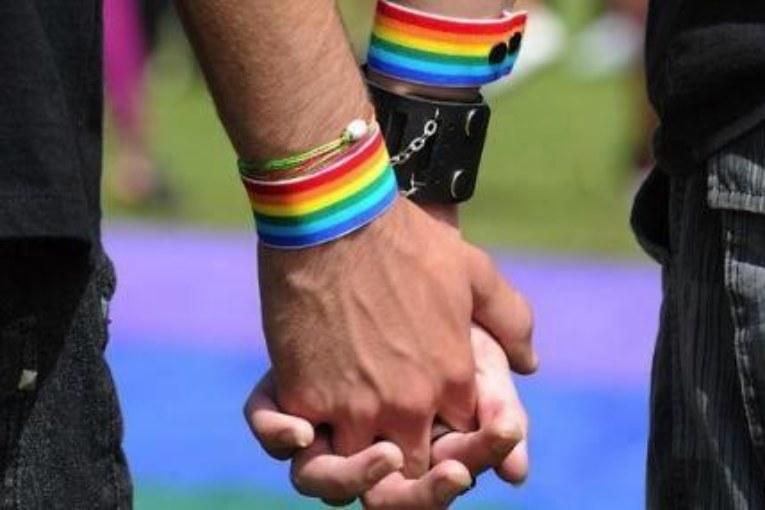 Unioni civili. Ecco la legge ''arcobaleno''