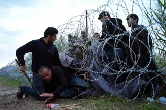 news_img1_77007_migranti-ungheria-filo-spianto