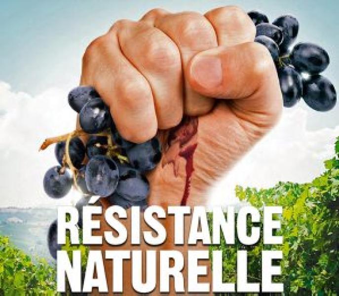 La rivoluzione sta nel vino naturale (se la vigna è collettiva)