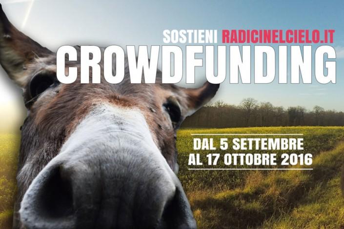 Crowdfunding per un viaggio ostinato