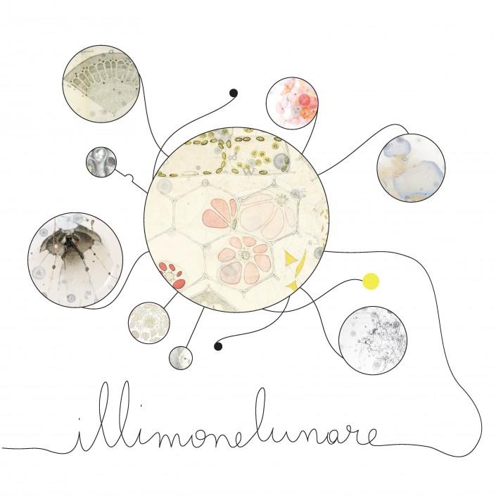 ft_il-limone-lunare_logo-quadrato