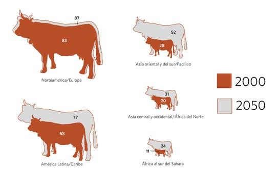 Consumo di carne per regioni mondiali