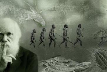 Turchia: Erdogan ha paura di Darwin
