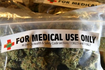 Cannabis terapeutica,