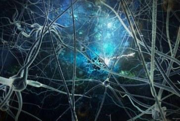 Noosfera: l'intelligenza collettiva può salvare il mondo
