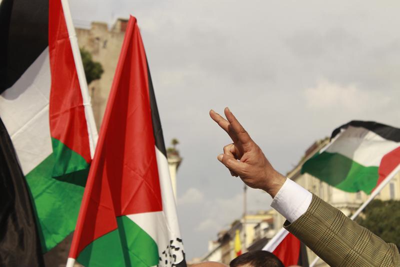 Perché s'è manifestato per la Palestina