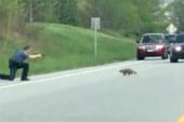 """USA: agente uccide marmotta per """"legittima difesa"""" VIDEO"""