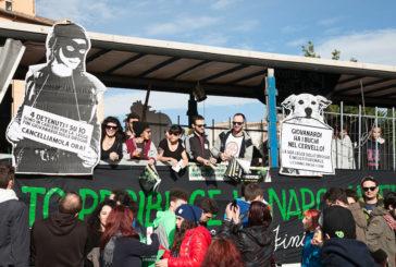 Cannabis, quei falsi miti del proibizionismo