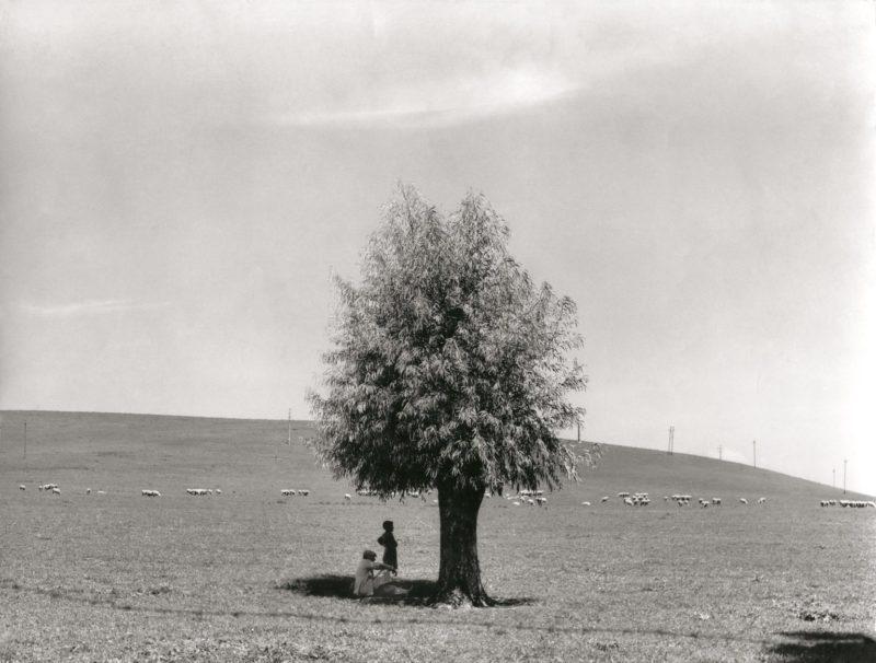 Fotografia, le nove vite di Fulvio Roiter