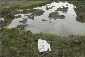 Foggia, quando a danneggiare l'agricoltura è Aqp