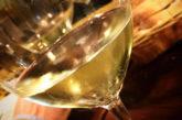 Genova Wine Festival