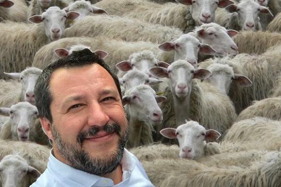 Pastori sardi, mille avvisi di garanzia per un reato inventato da Salvini