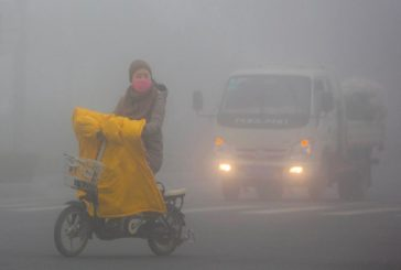 Non sarà un virus a migliorare il clima