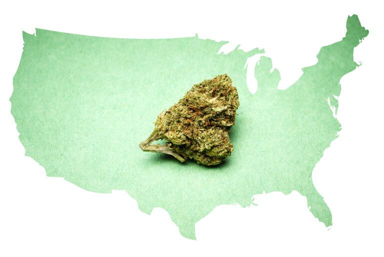 Usa, la cannabis batte i due contendenti alla Casa Bianca